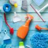 инструменты для чистки унитаза